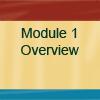 Module #1 Button