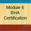 Module #6-button
